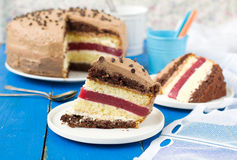 Biscuit cake with vanilla and chocolate cream and cherry jelly.  Stock Images