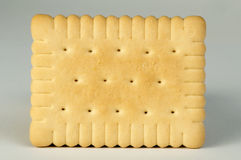 Biscuit close up Stock Image