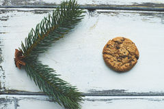 Biscuit and conifer Royalty Free Stock Photo