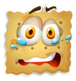 Biscuit cookie with sad expression Stock Photo