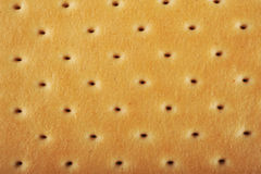 Biscuit / Cookie Texture Royalty Free Stock Photos