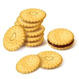 Biscuit cookies or cracker with cream vector Royalty Free Stock Photography