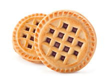 Biscuit cuit au four Photographie stock