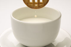 Biscuit with a cup of milk Stock Images