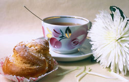 Biscuit and cup of tee Stock Images