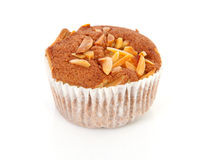 Biscuit cupcake with nuts Royalty Free Stock Image