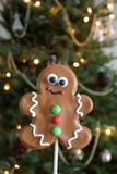 Biscuit décoré de pain d'épice de Noël photographie stock