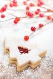 Biscuit d'arbre de Noël Image libre de droits