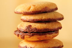 Biscuit de chocolat Photo stock