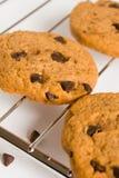 Biscuit de chocolat photo libre de droits