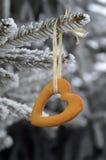 Biscuit de forme de coeur s'arrêtant sur l'arbre. L'hiver. Photographie stock