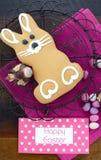 Biscuit de lapin de pain d'épice de Pâques Images libres de droits