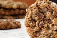 Biscuit de macadamia de puce de chocolat Image libre de droits