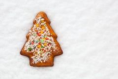 Biscuit de Noël de pain de gingembre Photos stock