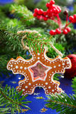 Biscuit de pain d'épice de Noël Photos libres de droits