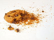 Biscuit de puce de chocolat Photo stock