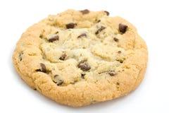 Biscuit de puce de chocolat. Image libre de droits
