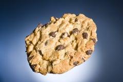 Biscuit de puce de chocolat Image stock