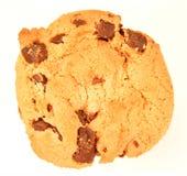 Biscuit de puce de chocolat d'isolement Images stock