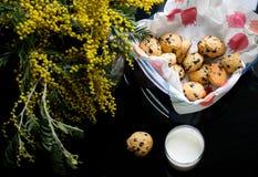 Biscuit de puces de chocolat américain Images stock