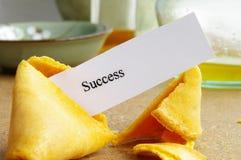 Biscuit de réussite Image stock