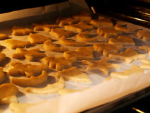 Biscuit. Dought shapes on the parchment baking paper in the oven royalty free stock image