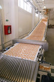 Biscuit factory. Lots of biscuit in a processing line royalty free stock photos