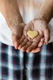 Biscuit  heart in hands Stock Photos