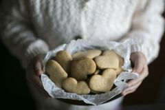 Biscuit in the little arms. Biscuit are in the little arms in the light day Stock Images