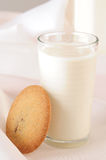 Biscuit and milk Royalty Free Stock Images