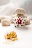 biscuit Moitié-mangé de sablé Photographie stock