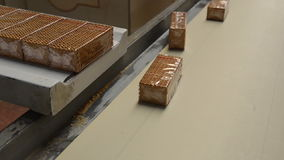 Biscuit packing stock video footage