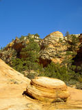 Biscuit Rock Stock Image