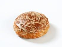 Biscuit russe de pain d'épice (Pryanik) Image stock