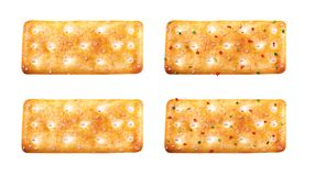 Biscuit. Salty and spicy biscuits. Available on packaging vector illustration