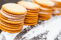 Biscuit for snack. Stock Photography