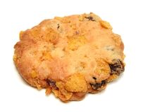 Biscuit Temptation Royalty Free Stock Photography