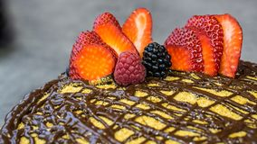 Sponge cake on top chocolate and fruit royalty free stock photo