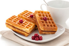 Biscuit waffles with cherries. On a plate against a cup of tea isolated on white background stock photo