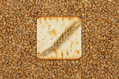 Biscuit and wheat Royalty Free Stock Photo