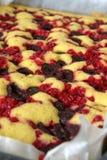 Biscuitgebak met rode aalbessen en kersen Stock Foto