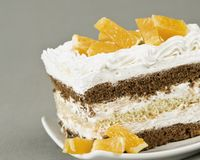 Biscuitine cake with oranges Stock Images