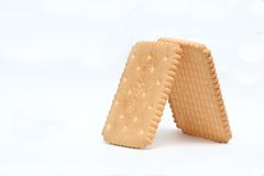 Biscuits. Yummy plain biscuits with white isolated background Stock Photography
