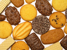 Free Biscuits Royalty Free Stock Photos - 251328