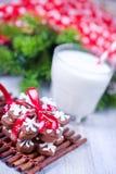 Biscuits avec du lait Photographie stock