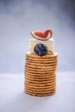 Biscuits avec du raisin et la figue de fromage Photographie stock libre de droits