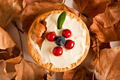 Biscuits avec le fromage fondu et les myrtilles Photo libre de droits