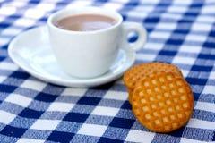Biscuits avec une cuvette de chocolat photographie stock