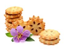 Biscuits bons photo stock