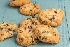 Biscuits caoutchouteux de canneberge photos libres de droits
